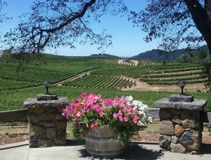 Pride Rimrock Vineyard