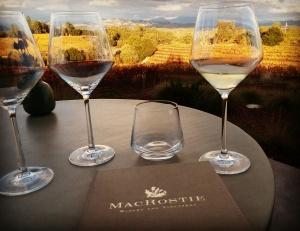 MacRostie glasses w view